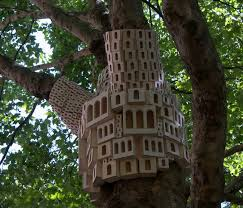 places birds sleep a big look at a lot of birdhouses treehugger