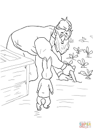 peter rabbit coloring pages 8315