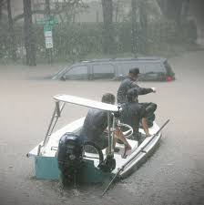 velvet car rain houstonia