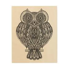 owl wood pencil and in color owl wood