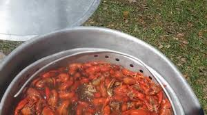 how to boiling crawfish louisiana style youtube