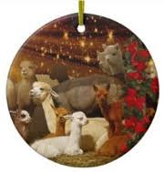 alpaca ornaments decorate tree with alpaca