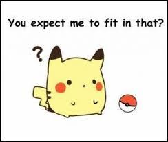 Funny Pikachu Memes - fat pikachu pokémon anime and pokemon stuff