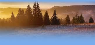 Bad Herrenalb Wetter Schwarzwald Wetter Com