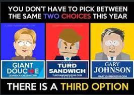 Gary Johnson Memes - who is gary johnson third candidate