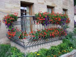 30 best balcony ideas images on pinterest balcony ideas plants
