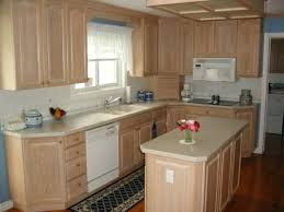 Paint Kits For Kitchen Cabinets Lowes Canada Cabinet Refacing Kitchen Cabinets Brilliant Kitchen