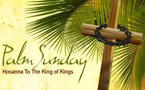 palm for palm sunday reflections images and for palm sunday pastor s postings
