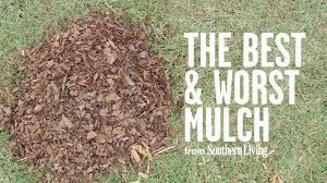 the best and worst mulch for your garden southern living youtube