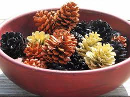 painted pine cone crafts for thanksgiving family