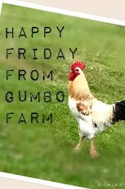gumbo farm a