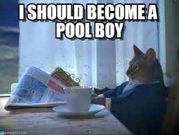 Pool Boy Meme - i should become a pool boy one percent cat meme on memegen