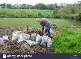 horse manure field stock photos u0026 horse manure field stock images