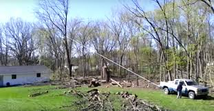 For A Tree Tree Removal Goes Horribly Wrong For These Contractors And Their