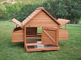 Chickens Backyard Chicken Coop Building Kits 9 Diy Build Yourself Chicken Coop Kit 6