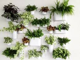 Home Decorating Plants Amazing Home Décor With Greenery Home Decor Ideas