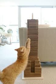Cat Scratcher Replacement Pads 42 Best Cat Toys Images On Pinterest Cat Stuff Cat Toys And Pet