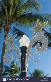 Christmas Decorations Palm Tree by Palm Trees Christmas Decorations Street Lamp Ocean Drive South
