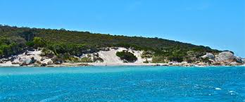 bay of fires tasmania insider tips and 4 best places to visit
