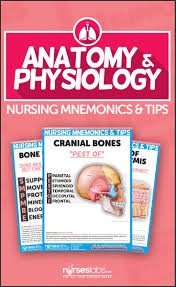 anatomy and physiology nursing mnemonics u0026 tips nursing