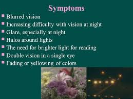 Halos Around Lights Dr Ibraheem Bashayreh Rn Phd Ppt Video Online Download
