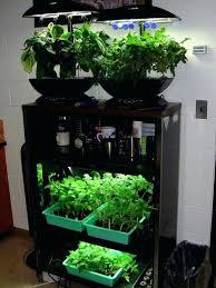 under cabinet grow light indoor herb garden light inspiring indoor spice garden herb with