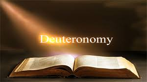Blindness Chapter Summaries Deuteronomy Chapter 28 Summary Bible Study Ministry
