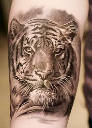 59 tiger tattoos designs ideas