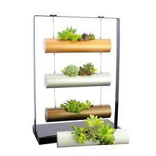 Ebay Vertical Garden - vertical garden succulent cactus small plants herb planting