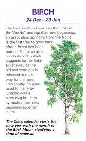 sacred celtic tree juniper http fb com