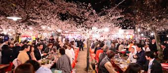 three destinations with cherry blossom festivals ifly klm magazine
