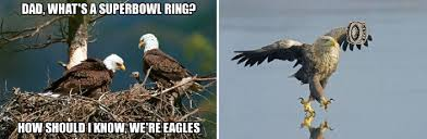 Superb Owl Meme - let me fix that eagles super bowl meme for you phillyvoice