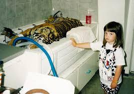 Dogs In The Bathtub 8bitdad Bathtub Tiger Says