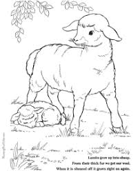 easter coloring lambs