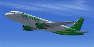 airasia vs citilink citilink airbus a320 pk glg for fsx