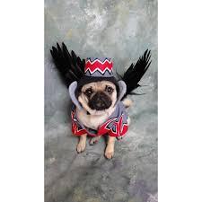 Flying Monkey Costume Monkey Dog Costume
