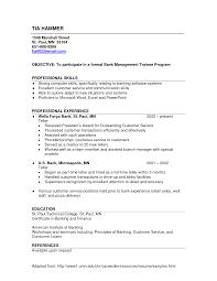 Resume Objective Statement Sample Objective Statement For Teller Resume Bank Teller Cover Letter