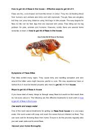 how to get rid of fleas in the house