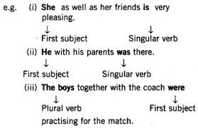 cbse class 7 english grammar subject verb agreement learn cbse