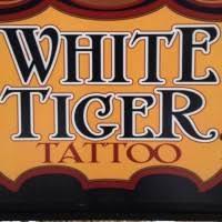 olio white tiger in rochester ny studio