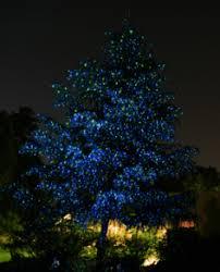 the easiest outdoor tree lighting outdoor lighting