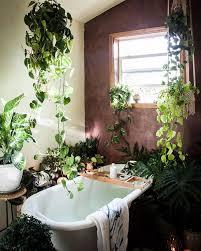 best 25 plant decor ideas on pinterest house plants wonderful best 25 jungle bathroom ideas on pinterest plants decor