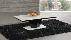 Black And White Coffee Table Black Gloss Coffee Table Home Design Ideas And Pictures