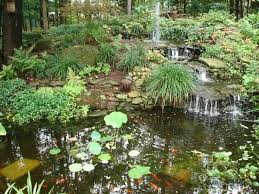 Backyard Ponds And Fountains 440 Best Pond And Garden Landscaping Images On Pinterest