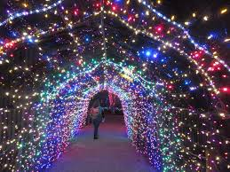zoo lights houston 2017 dates the katy texas blog almost wordless wednesday zoo lights at