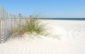 Montego Bay Panama City Beach by Driftwood Lodge Panama City Beach Local Info