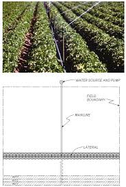 17 picture and operational sketch of a hand move irrigation