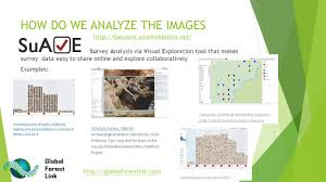 Interactive Map Global Forest Watch by Global Forest Link Using The Global Forest Watch Platform To