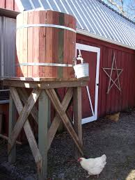 chicken water rain barrel
