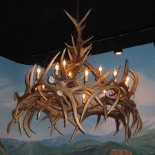 amazing deer antler chandelier round whitetail deer antler